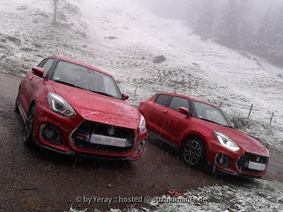 zwei swifts im schnee