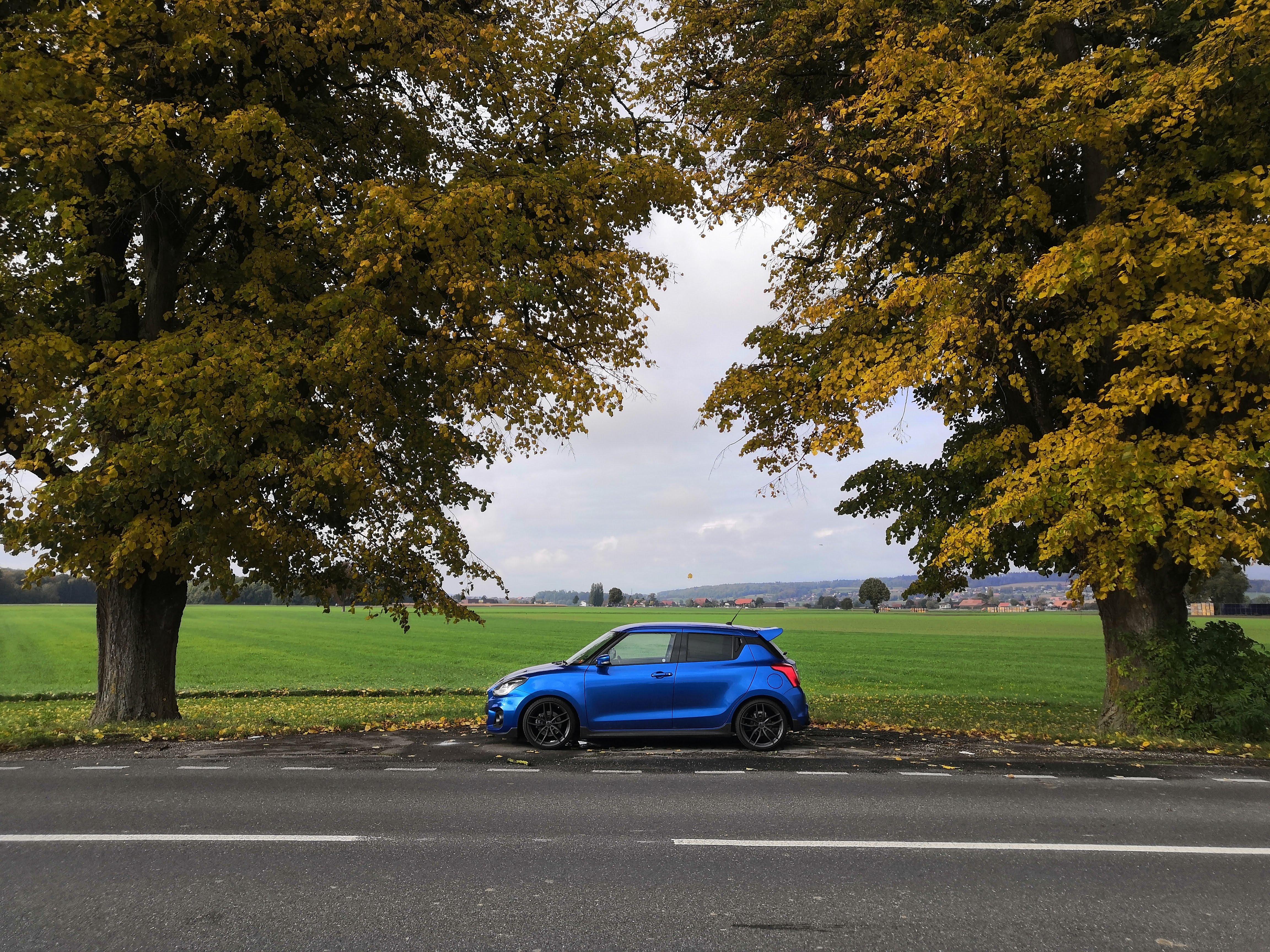 Herbstausfahrt